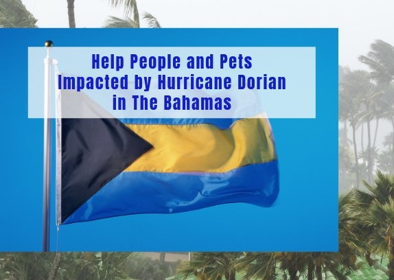 Help People and Pets Impacted by Hurricane Dorian in The Bahamas