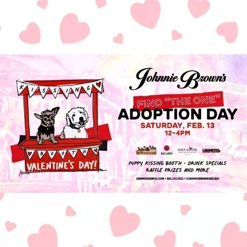 Valentine's Dog Adoption - Johnnie Brown's