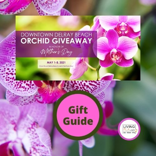 Downtown Delray Beach Orchid Giveaway & Gift Guide